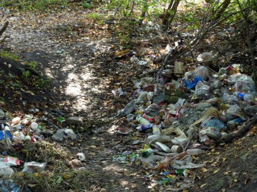 Кто за нами мусор уберёт?