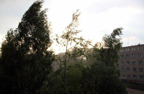 Синоптики прогнозируют усиление ветра