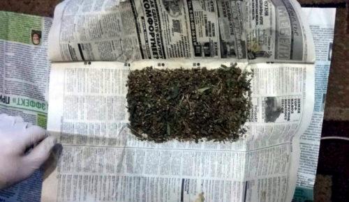В Старицком районе полицейские выявили факт хранения растительного наркотика