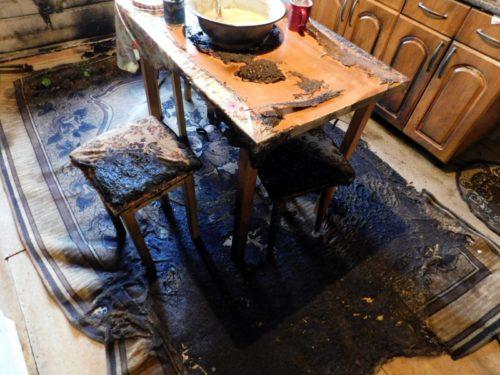 Житель Старицкого района признан виновным в убийстве двух женщин