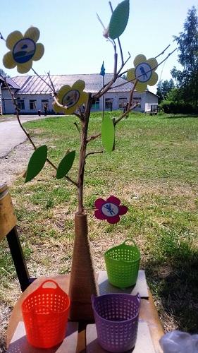 Ребята из «Улыбки» вырастили «Дерево здоровья»