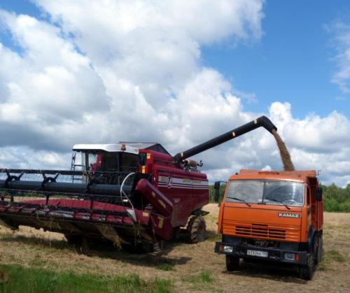 Мы работаем над качеством сельхозпродукции