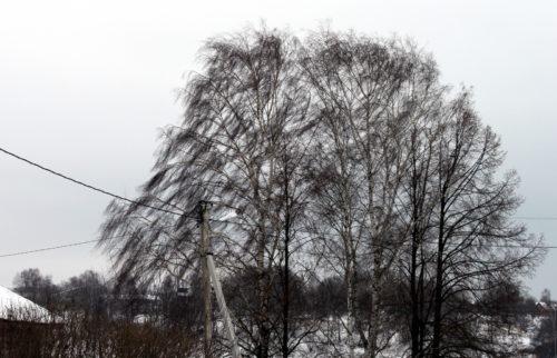 30 декабря ожидается усиление ветра