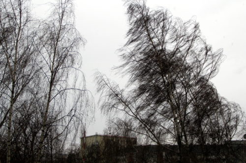 Ветер не стихнет