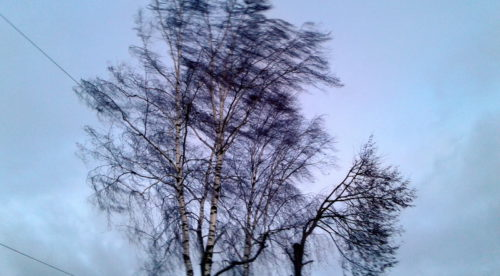 Понедельник обещает быть ветреным