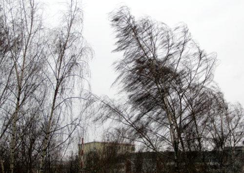 Ветер 22 апреля