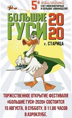 «Большие гуси-2020» - ждём!