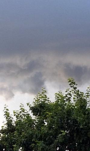 В Тверской области ожидается неустойчивая погода