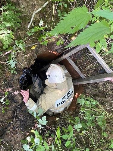Старицкие спасатели пришли на помощь собаке, которая провалилась в колодец