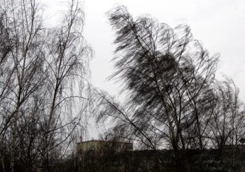 В воскресенье ветер усилится