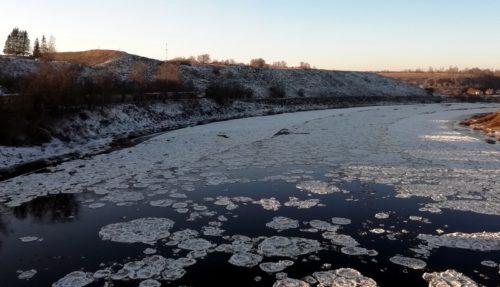 Первые жертвы льда