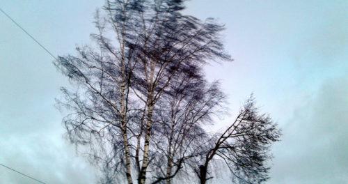 Ветер усиливается