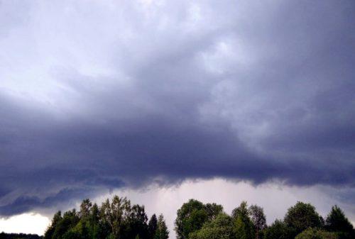 В Тверской области объявили штормовое предупреждение