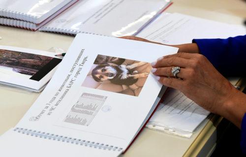 На заседании Правительства Тверской области рассмотрели внедрение в регионе современной системы обращения с безнадзорными животными