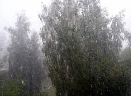 Синоптики вновь предупреждают о грозе и ливне
