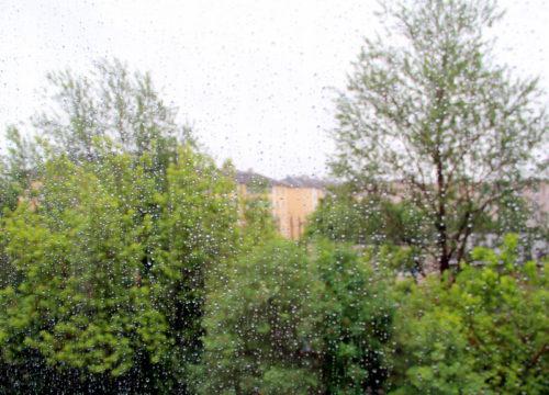 Синоптики предупреждают о сильном дожде и грозе